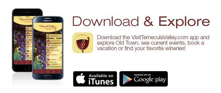 downloadvisittemeculaapp