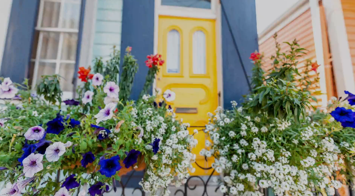 Beautiful Plants for Added Curb Appeal This Spring 2